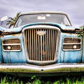 Wolseley by Rob Vandongen - Transportation Automobiles (  )