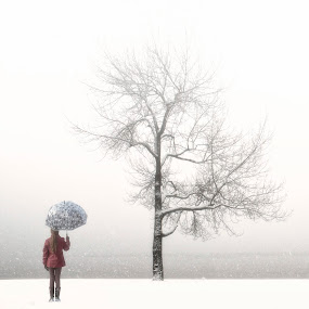 loneliness by Joana Kruse - Nature Up Close Trees & Bushes ( walking, person, pigtail, wood, braid, retro, lone, freezing, anonymous, child, girl, tree, bleak, cold, woman, snow, dark, pink, from behind, alone, lonely, boots, sole, jacket, polka-dotted, vintage, umbrella, dotted, back, snowy, forest, young, woods, snowing, winter, female, trees, wintery, walk, gloomy )