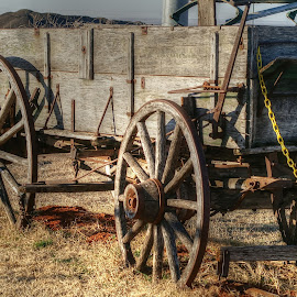Wagon  by D.M. Russ - Artistic Objects Antiques ( old wagon, d.m. russ )