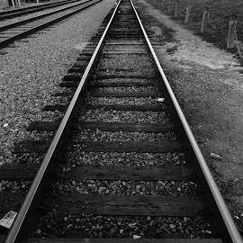 Street Car Tracks in Black And White by David Walters - Abstract Patterns ( tracks b & w sony hx400v, street, french quarter, perspective )