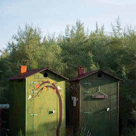 In Style by Dubravka Krickic - Buildings & Architecture Other Exteriors ( dugi otok, toilet, green, croatia, outside,  )