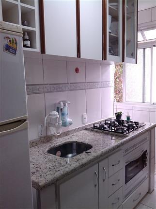 Apartamento Padrão à venda, Parque São Luís, São Paulo