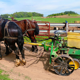 getting ready to plow by Jon Radtke - Transportation Other ( getting ready to plow )