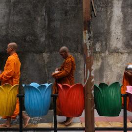 The Monk by Michael Richard Anugrah - People Street & Candids ( pindhapata, budha, buddha, buddhist, monk )