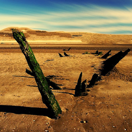 by Laimonas Šepetys - Landscapes Deserts (  )