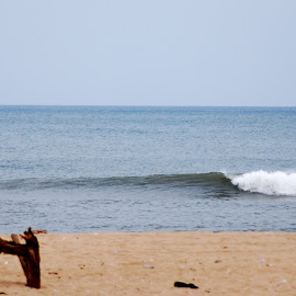 by S S Bhattacharjee - Landscapes Beaches