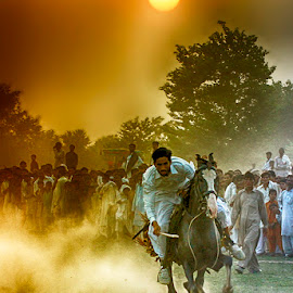 Chandu by Abdul Rehman - Sports & Fitness Other Sports ( horseback, thrill, sand, adventure, dust, horse, rural, dusty, rural sports )
