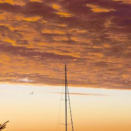 possibilities by Karin Lyke - Transportation Boats ( morning sail, dawn, transportation, sailboat, lake sailing )
