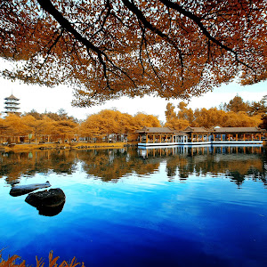 [Chinese Garden] Turtle Lake_01.JPG