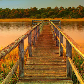 Fall Dock  by Jennifer Hill - Landscapes Waterscapes