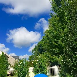 Blue Day by Vijay Govender - City,  Street & Park  Neighborhoods
