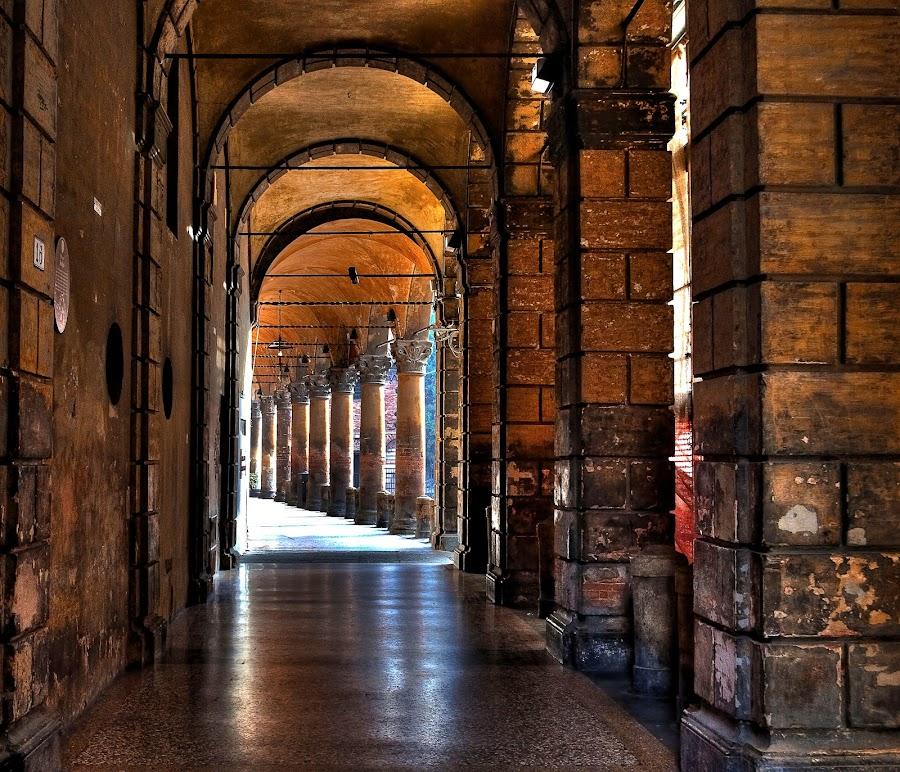 Bologna by Forastico Bi - Buildings & Architecture Other Exteriors ( bologna, columns, forastico, italy, portici )