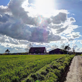 Changing weather in the spring of Denmark by Keld Helbig Hansen - Landscapes Weather