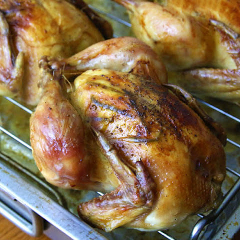 Roasted Garlic, Herb and Lemon Cornish Game Hens