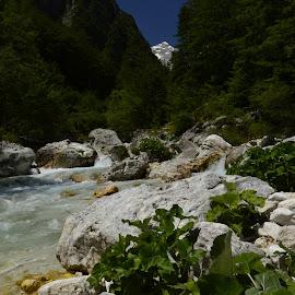 Soča 2 by Bojan Kolman - Nature Up Close Rock & Stone