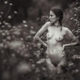 Last summer by Dmitry Laudin - Nudes & Boudoir Artistic Nude ( body, figure, nude, girl, summer, beauty, flowers )