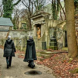 by Irena Brozova - City,  Street & Park  Cemeteries