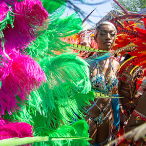 West Indies Feathers by VAM Photography - People Street & Candids ( woman, feathers, culture, west indies, parade, people, brooklyn new york )