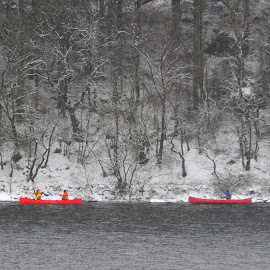 A Paddle in Winter by DJ Cockburn - Sports & Fitness Watersports ( uk, wales, winterscape, sport, canoe, lake, plas y brenin, conwy, forest, capel curig, boat, recreation, landscape, watersport, winter, llynnau mymbyr, cold, nature, tree, snow, snowdonia, britain )