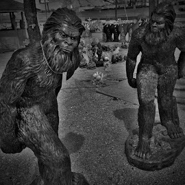 Bigfoot?! by Doug Lowry - Artistic Objects Other Objects (  )