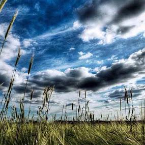 Crazy Clouds. by Brennan Adamus - Instagram & Mobile Other (  )