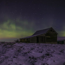 Barnyard Dance by Laura Gardner - Novices Only Landscapes ( farm, sky, barn, night photography, stars, nd, open prairie, 2016, northern lights )