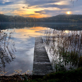 At the end of the day  by Alf Winnaess - Uncategorized All Uncategorized
