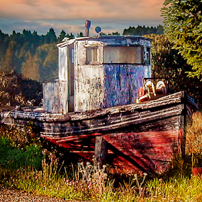 Abandoned Boat in Field at Sunrise by Joseph Vittek - Transportation Boats ( field, old, wood, trees, ocean, paint, fishing, sunrise,  )