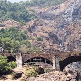 bridges and valleys by Prabhat Kumar - Transportation Trains ( train, valley, bridge, transportation )