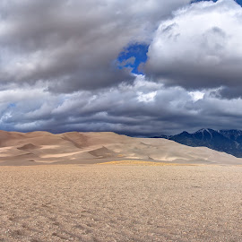Dunes II by Max Moorman - Landscapes Deserts