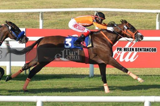 Bobby Q (Shanghai Bobby) conquistó el Clásico Manuel Quintela (G3-2100m-Pasto-MAR). - Staff ElTurf.com