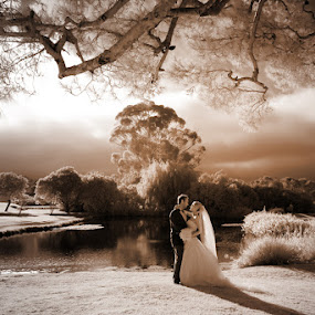 romantic scene by Scott Nelson - Wedding Bride & Groom