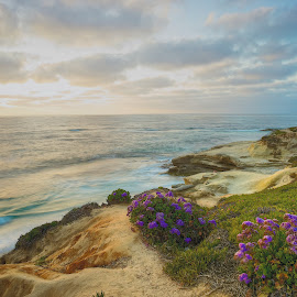 Lajolla Sunset by Dean Mayo - Landscapes Beaches ( lajolla )