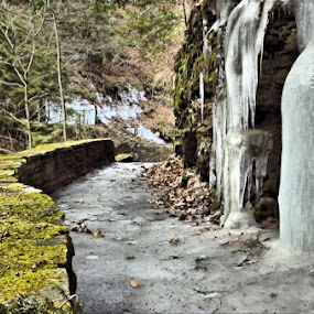Frozen Pathway by Jim Davis - Landscapes Forests ( watkings glen, gorge, ice, stone wall )