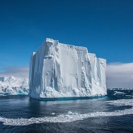 Giant Iceberg by Taylor Butz - Landscapes Travel ( iceberg, epic, antarctica, ice, landscape, icebergalley )