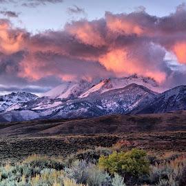 Lost River Range by Dave Bower - Landscapes Sunsets & Sunrises