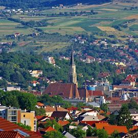Cluj, view from the Buna ziua quartier by Ciprian Apetrei - Buildings & Architecture Public & Historical ( church, romania, perspective, architecture, cityscape )