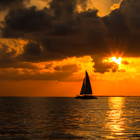 Sail Away by Pennye Thurmond - Landscapes Sunsets & Sunrises ( orange, sail, ocean, sunset, key west, sun, water, boat )