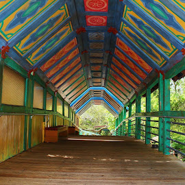 Painted Bridge by Susan McDavit - Buildings & Architecture Bridges & Suspended Structures ( painted, zoo, architecture, bridge )