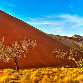 Namib Desert by Stanley P. - Landscapes Deserts ( desert )