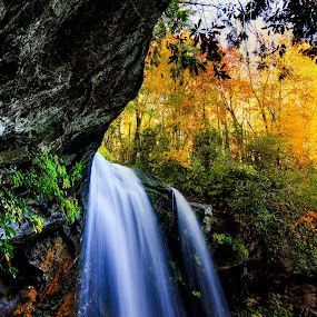 Waterfall Garden, Dry Falls Highlands NC by Jonathan Wheeler - Landscapes Mountains & Hills ( dry falls, western north carolina, waterfalls, fall colors, cullasaja river, appalachian mountains, hanging gardens )