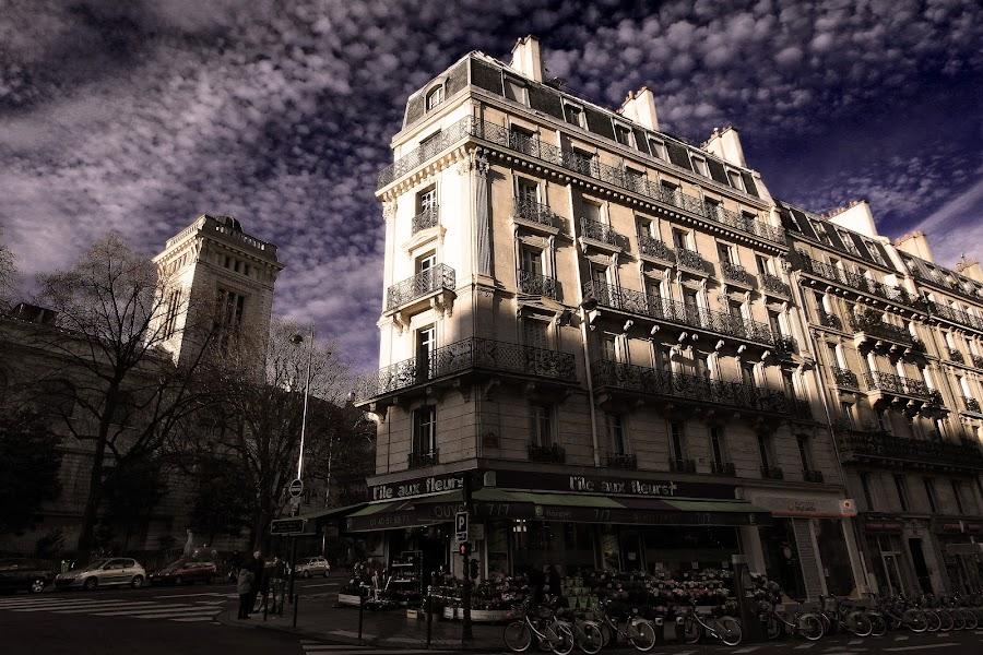 street corner in paris by Almas Bavcic - City,  Street & Park  Street Scenes