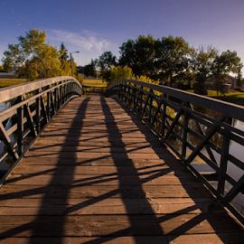 Camrose City Park by Joseph Law - City,  Street & Park  City Parks ( houses, blue sky, alberta, bushes, camrose, trees, lake, bridge, city park, shadows )