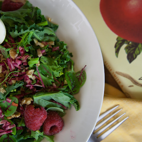 WILD MUSTARD GREEN AND MICROGREEN CHIOGGIA BEET SALAD