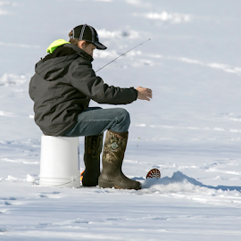 Cold Fishing by Robert George - Sports & Fitness Other Sports (  )