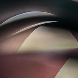 Paper Abstract by Ceri Jones - Abstract Macro ( abstract, form, folds, paper, curls, shape )