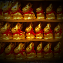 Lindt Chocolate Easter Bunnies by Cheryl Beaudoin - Public Holidays Easter ( holiday, chocolate, easter, lindt, bunnies, snack )