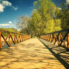park by Tomasz Marciniak - City,  Street & Park  City Parks