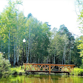 A wooden bridge over a city lake by Svetlana Saenkova - Buildings & Architecture Bridges & Suspended Structures ( wooden, bridge, carved, lake )