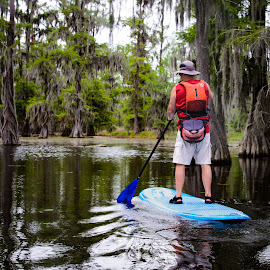 Paddle Boarding in the Swamp by Judy Rosanno - Sports & Fitness Fitness